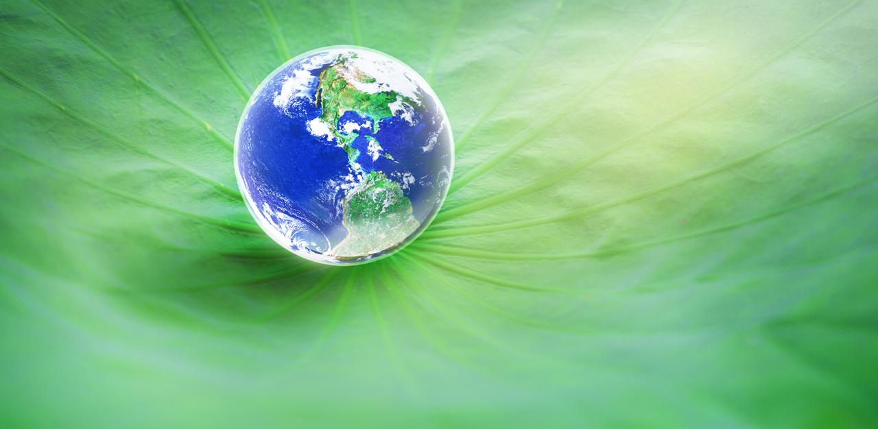 ACV Enviro Environmental Friendliness
